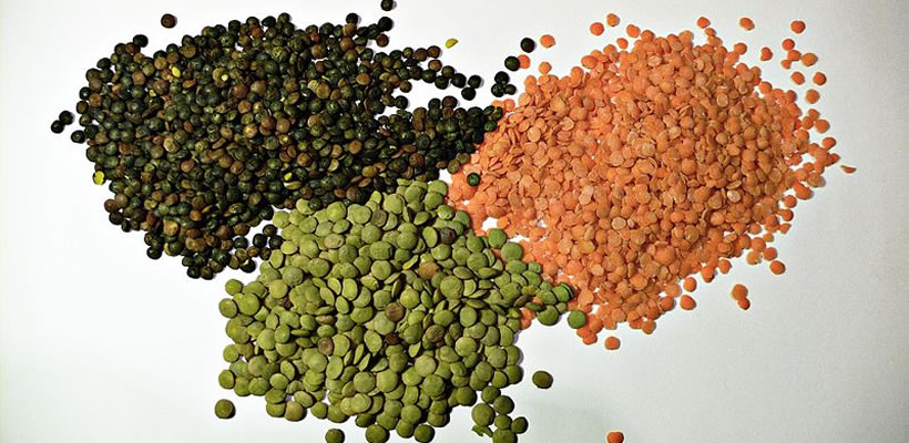 Anatolian Soil - lentil,rice,chickpeas,bulghur,pounded wheat,beans,foreign,trade